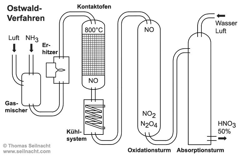 der kohlenstoffkreislauf arbeitsblatt
